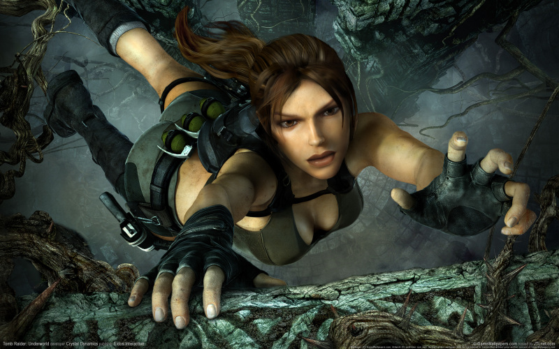 TombRaider fall