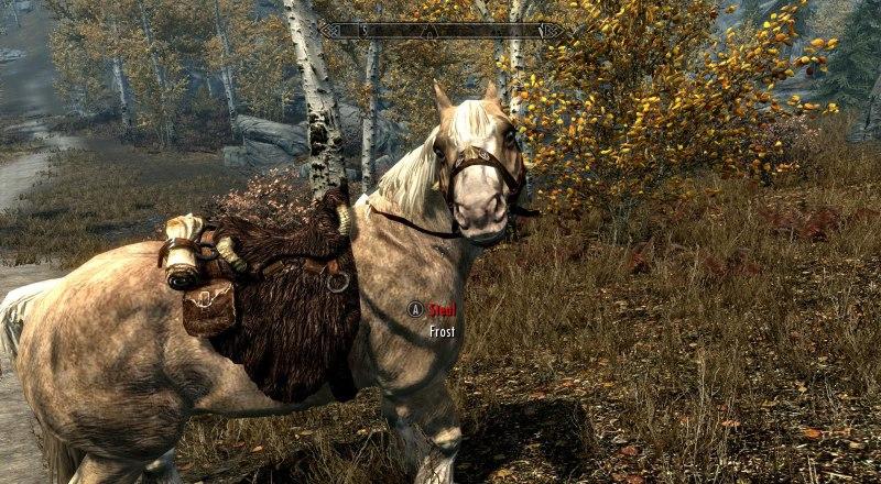 skyrim забавная лошадка