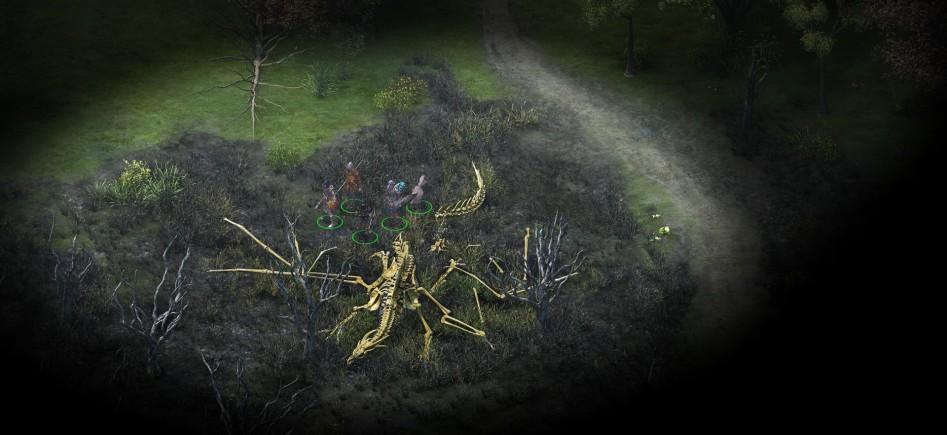 pillars of eternity dragon