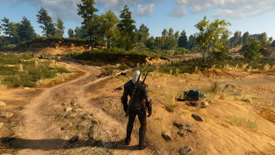 the-witcher-3-wild-hunt-detail-level-001