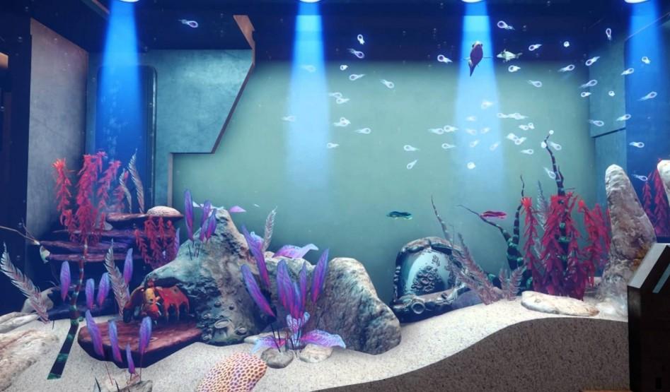 sc Fishtank