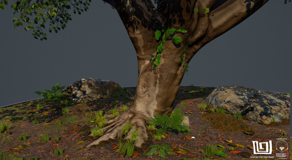 guilherme-rambelli-tree-photogrammetry