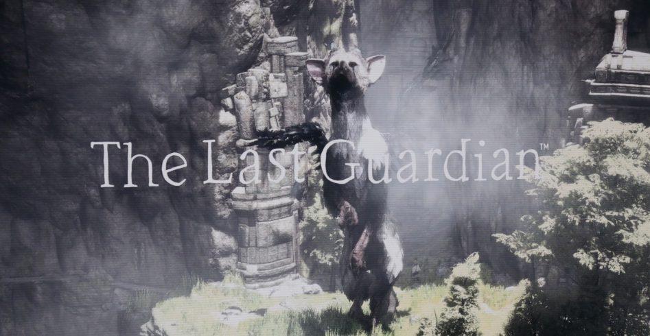 the last guadrian