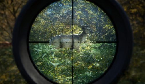 thehunter-call-of-the-wild-animal-in-crosshairs